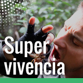 Supervivencia en pamplona